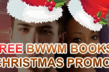 Christmas BWWM Romance Books For Festive Moods